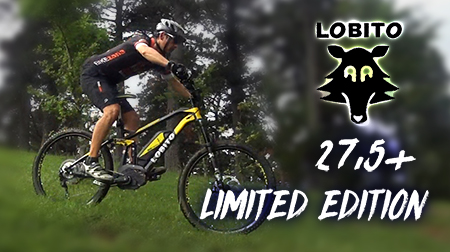 E-bike LOBITO 27.5+
